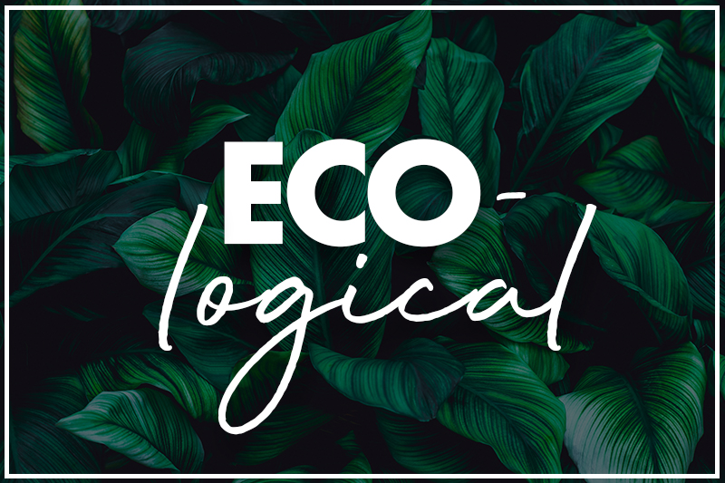 Eco-logical – the green products that make sense for your business!
